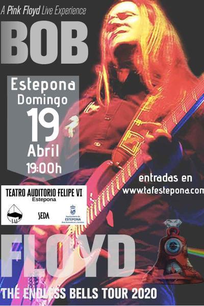 Bob Floyd 'A Pink Floyd Live Experience'